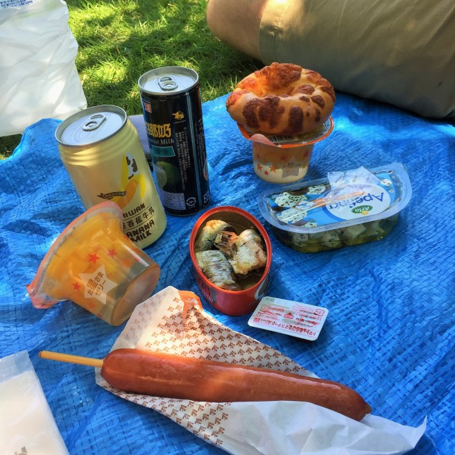 yummy picnic of sausage mandarin orange jello canned salmon cheese and olives and cheese bagels i tried some banana milk and chad had coconut milk chad garden pod